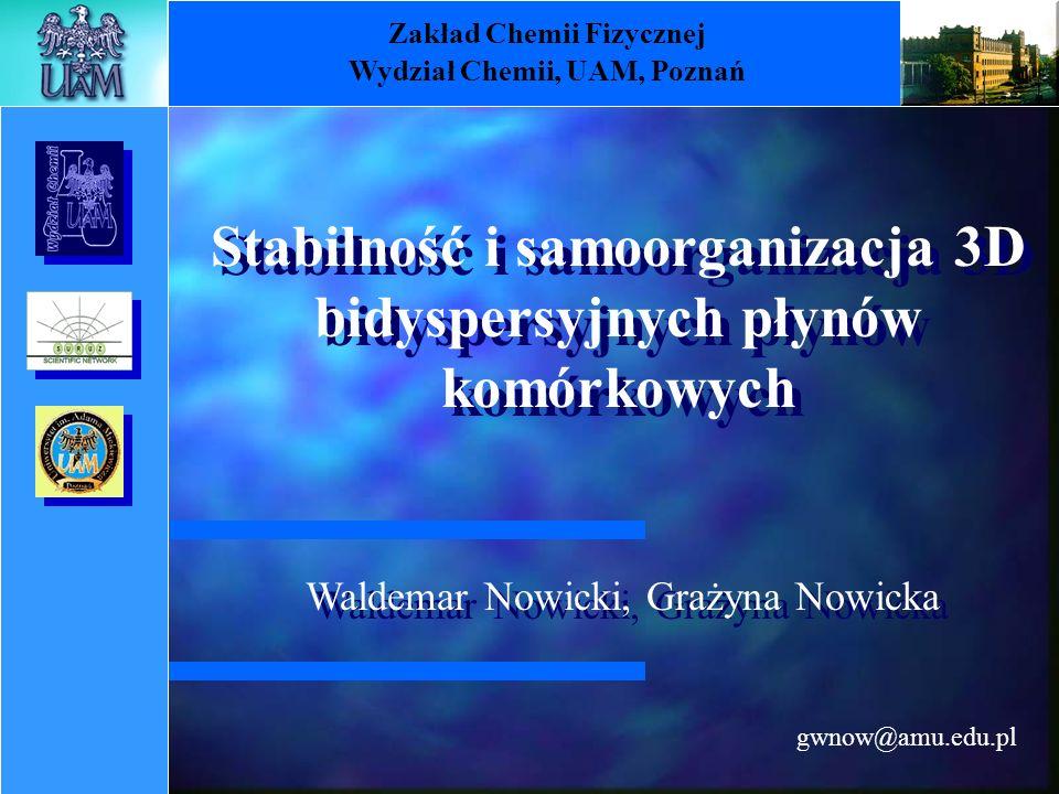 gwnow@amu.edu.pl Zakład Chemii Fizycznej Wydział Chemii, UAM, Poznań Waldemar Nowicki, Grażyna Nowicka Stabilność i samoorganizacja 3D bidyspersyjnych