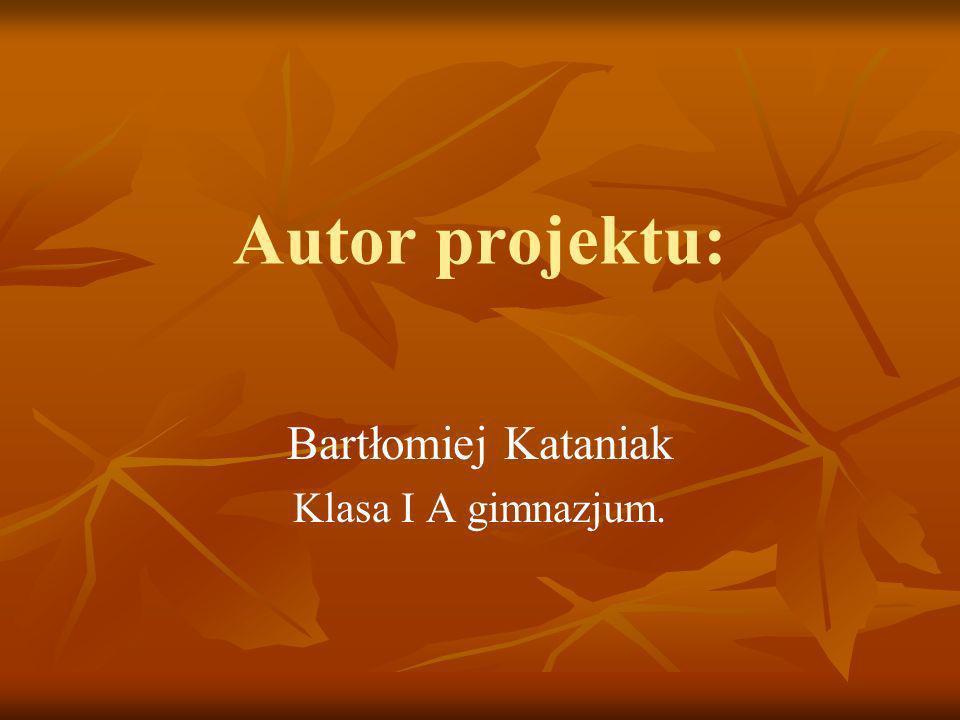 Autor projektu: Bartłomiej Kataniak Klasa I A gimnazjum.