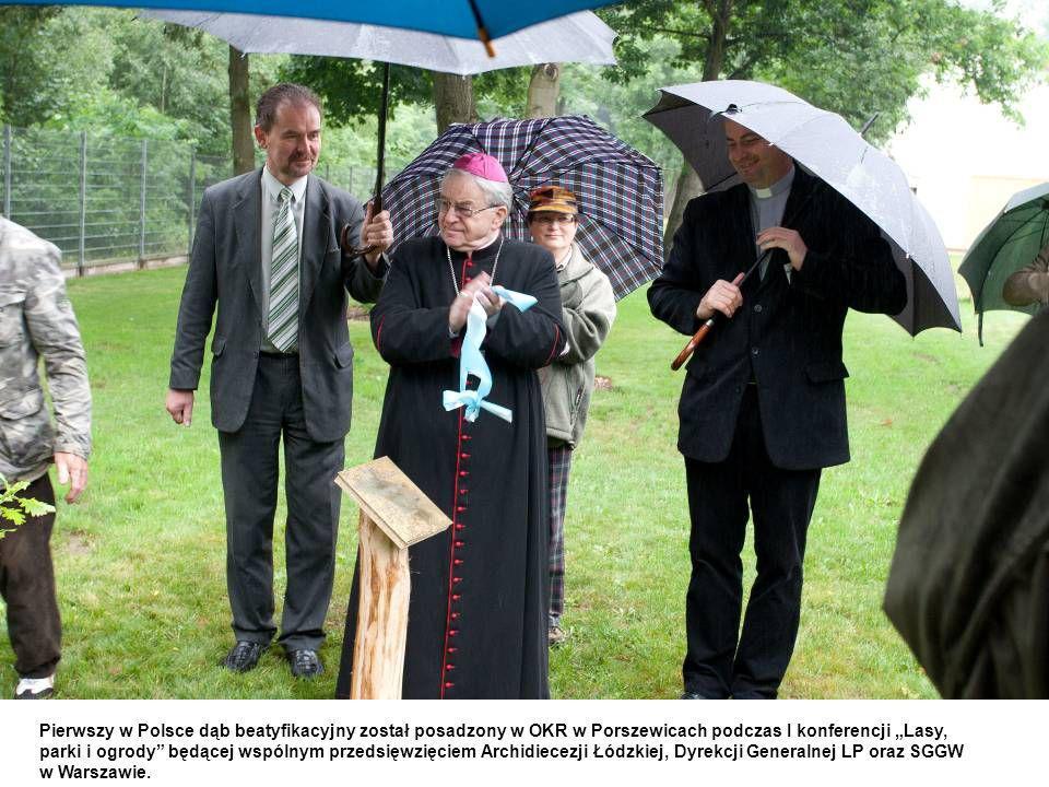 Pierwszy w Polsce dąb beatyfikacyjny został posadzony w OKR w Porszewicach podczas I konferencji Lasy, parki i ogrody będącej wspólnym przedsięwzięciem Archidiecezji Łódzkiej, Dyrekcji Generalnej LP oraz SGGW w Warszawie.