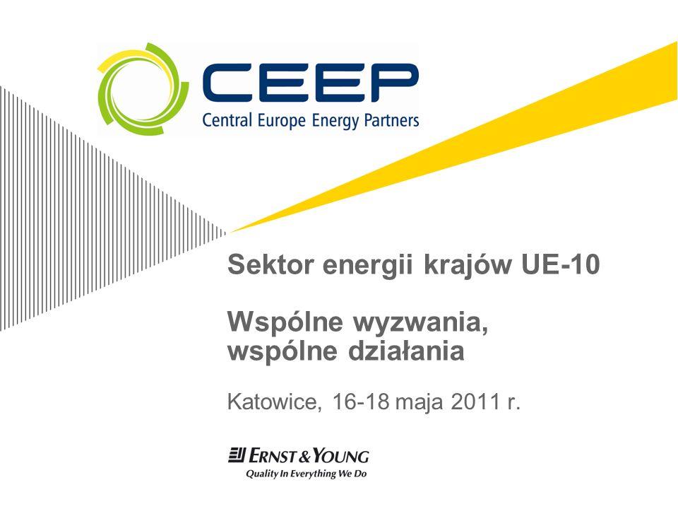 Sektor energii krajów EU 10Page 12 … oraz wspólne cele w zakresie realizacji zobowiązań Unijnych Pozyskanie środków - zyskanie finansowania niezbędnych inwestycji z UE oraz tworzenie sojuszy i dzielenie się nakładami inwestycyjnymi.