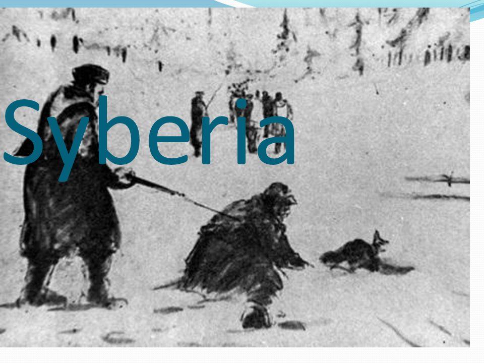 Na Syberię trafiła ludność przymusowo przesiedlona z ziem polskich w toku operacji deportacyjnych przeprowadzonych w lutym i czerwcu 1940 r.