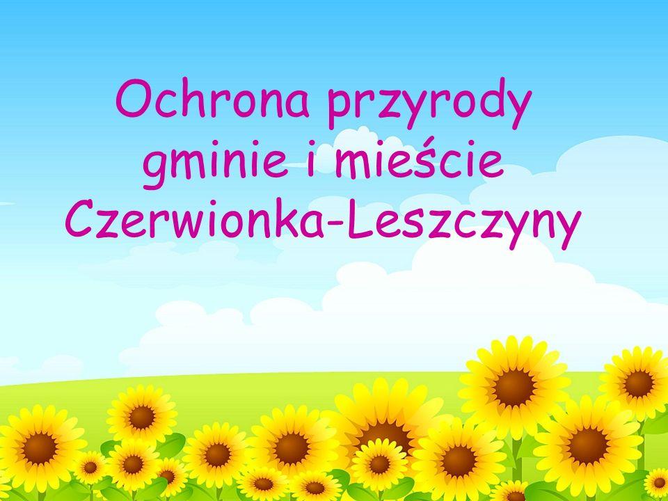 Czerwionka-Leszczyny znajduje się w Kotlinie Raciborsko-Oświęcimskiej położona jest w dorzeczu Odry główną rzeką jest Bierawka – prawy dopływ Odry powierzchnia gminy i miasta wynosi 115 km² żyje w niej około 42 tys.