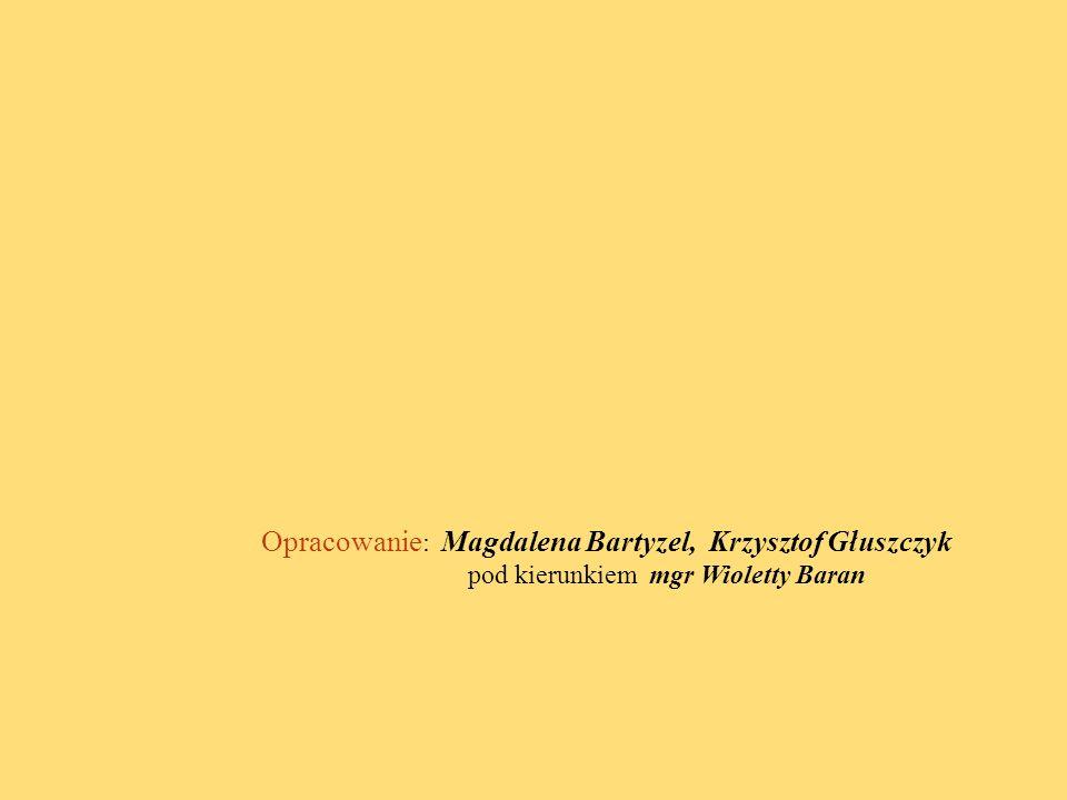 Opracowanie : Magdalena Bartyzel, Krzysztof Głuszczyk pod kierunkiem mgr Wioletty Baran