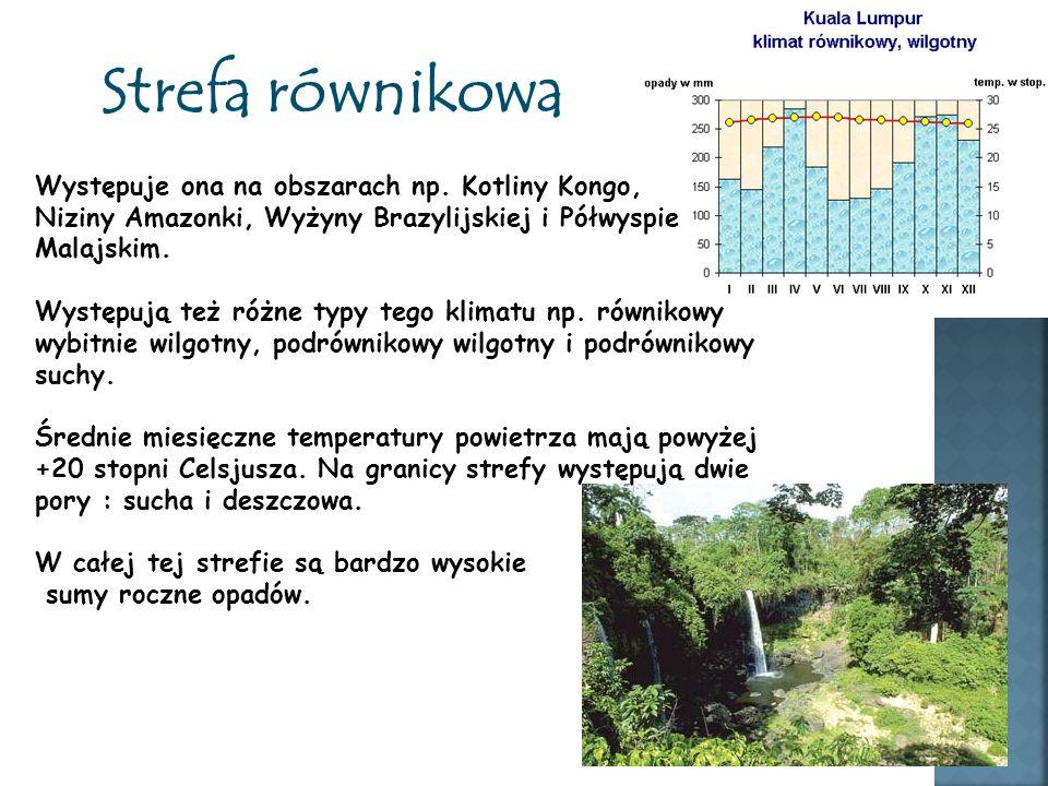Strefa równikowa Występuje ona na obszarach np. Kotliny Kongo, Niziny Amazonki, Wyżyny Brazylijskiej i Półwyspie Malajskim. Występują też różne typy t