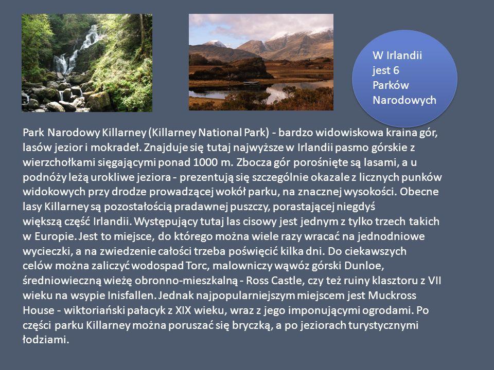Park Narodowy Killarney (Killarney National Park) - bardzo widowiskowa kraina gór, lasów jezior i mokradeł. Znajduje się tutaj najwyższe w Irlandii pa