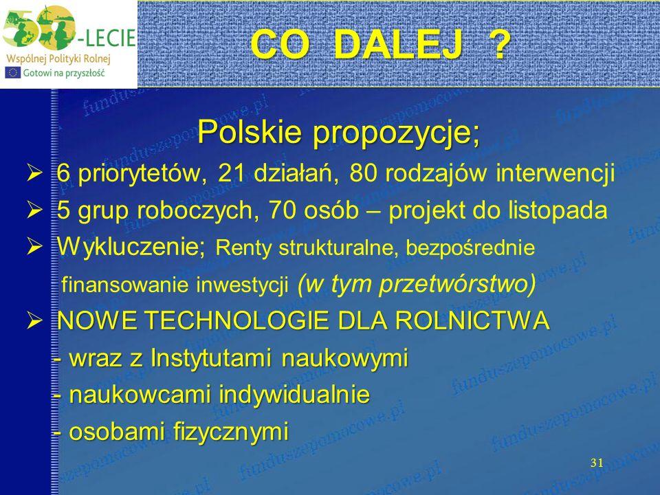 CO DALEJ ? CO DALEJ ? Polskie propozycje; 6 priorytetów, 21 działań, 80 rodzajów interwencji 5 grup roboczych, 70 osób – projekt do listopada Wyklucze