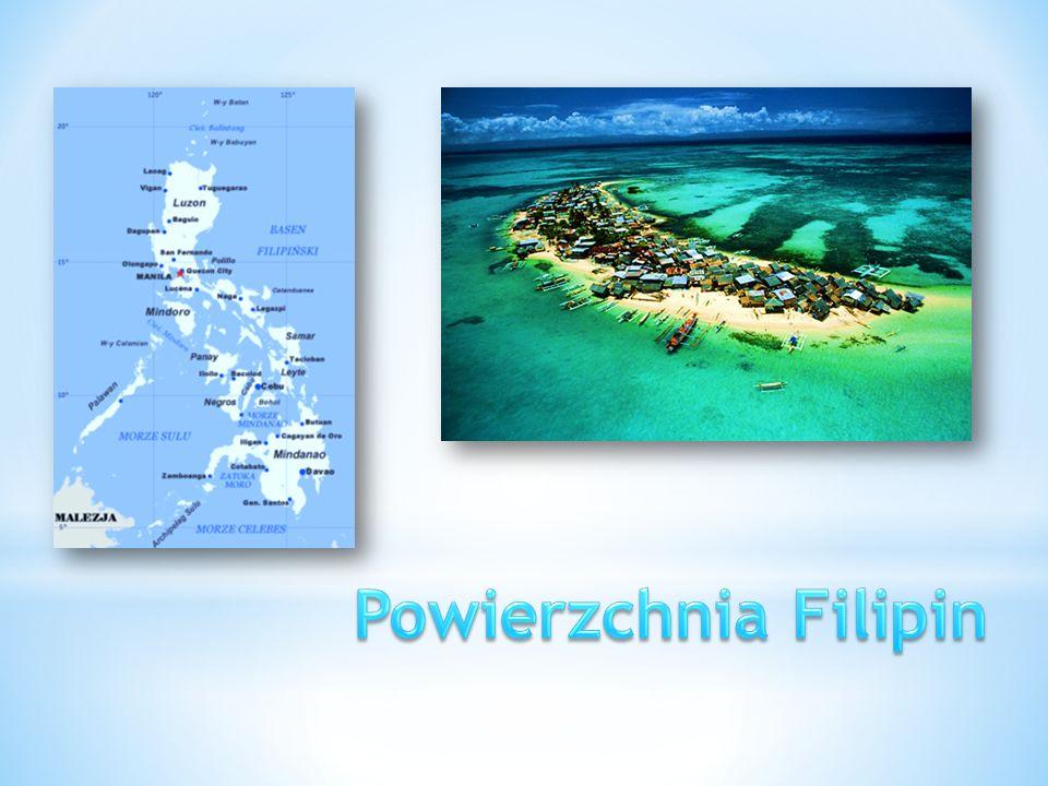 Wyspy Archipelagu Filipińskiego są zbudowane gł.