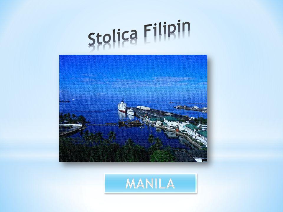 * Wzdłuż wschodniego wybrzeża Filipin znajduje się jeden z najgłębszych rowów oceanicznych na Ziemi Rów Filipiński.