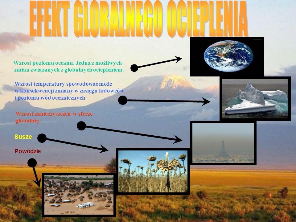 Wzrost poziomu oceanu.Jedna z możliwych zmian związanych z globalnych ociepleniem.