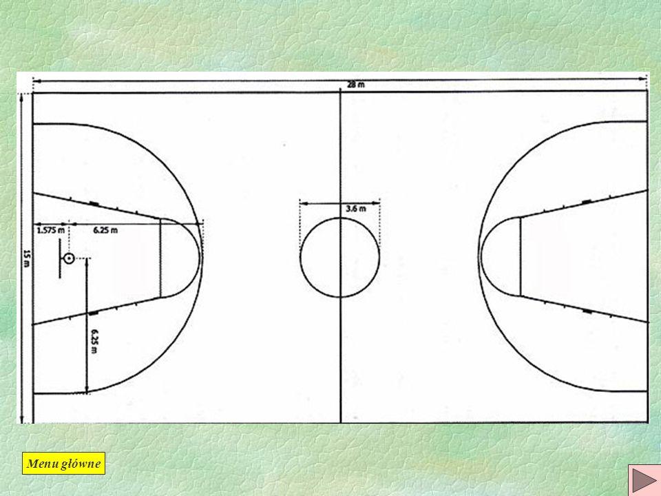 Wymiary boiska Tablica Zawodnicy Sędziowie Czas gry Cel gry, punktacja Podstawowe przepisy obowiązujące w grze Sygnalizacja sędziowska