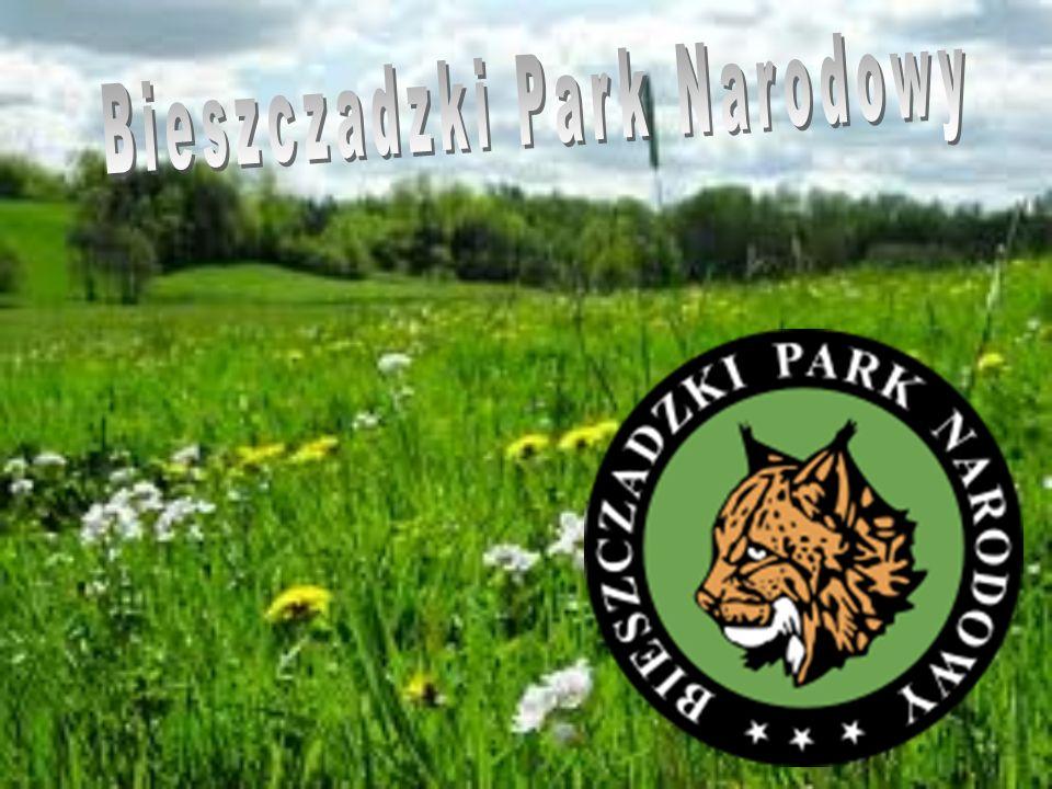 Historia Parku…..BPN jest trzecim co do wielkości parkiem narodowym na terenie Polski.