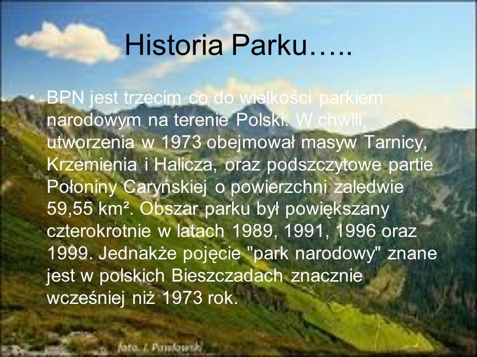 Historia Parku….. BPN jest trzecim co do wielkości parkiem narodowym na terenie Polski. W chwili utworzenia w 1973 obejmował masyw Tarnicy, Krzemienia
