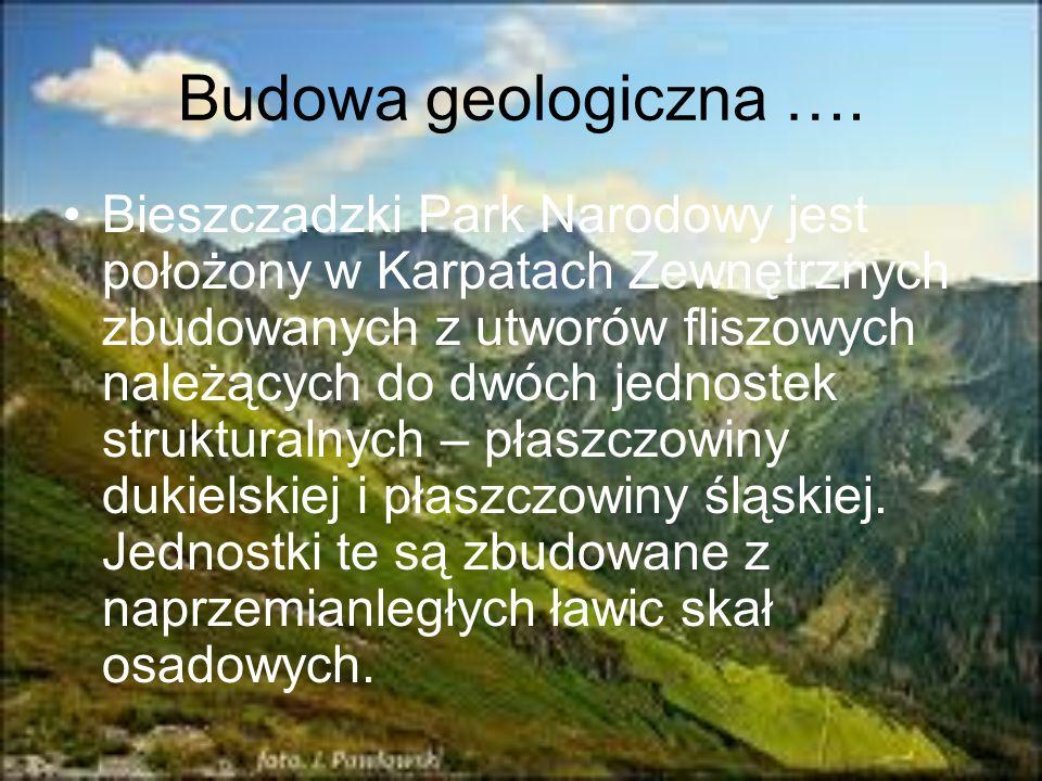 Budowa geologiczna …. Bieszczadzki Park Narodowy jest położony w Karpatach Zewnętrznych zbudowanych z utworów fliszowych należących do dwóch jednostek