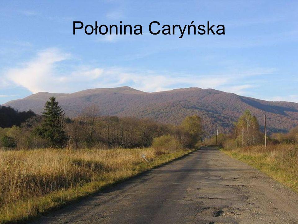 Obszar Bieszczadzkiego Parku Narodowego.