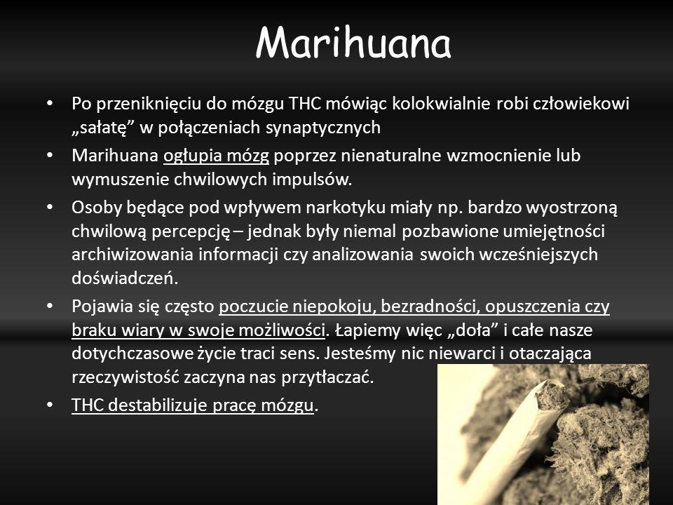 Po przeniknięciu do mózgu THC mówiąc kolokwialnie robi człowiekowi sałatę w połączeniach synaptycznych Marihuana ogłupia mózg poprzez nienaturalne wzm