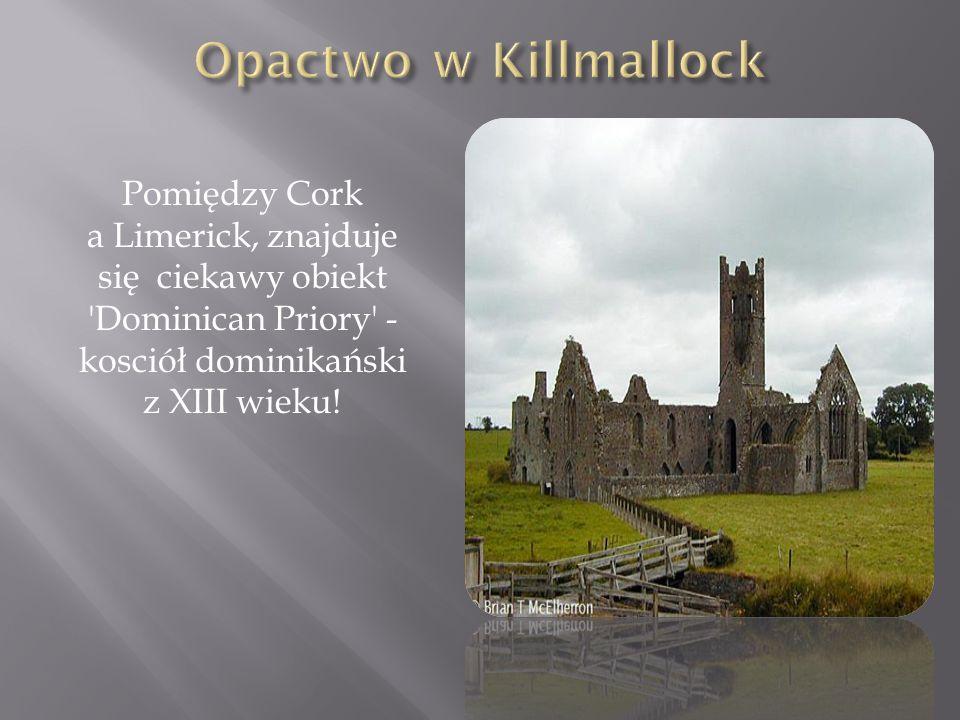 Pomiędzy Cork a Limerick, znajduje się ciekawy obiekt 'Dominican Priory' - kosciół dominikański z XIII wieku!