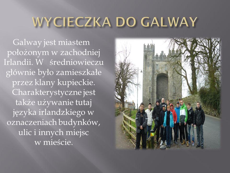 Galway jest miastem położonym w zachodniej Irlandii. W średniowieczu głównie było zamieszkałe przez klany kupieckie. Charakterystyczne jest także używ