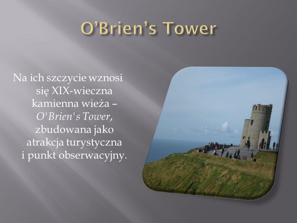 Na ich szczycie wznosi się XIX-wieczna kamienna wieża – O'Brien's Tower, zbudowana jako atrakcja turystyczna i punkt obserwacyjny.