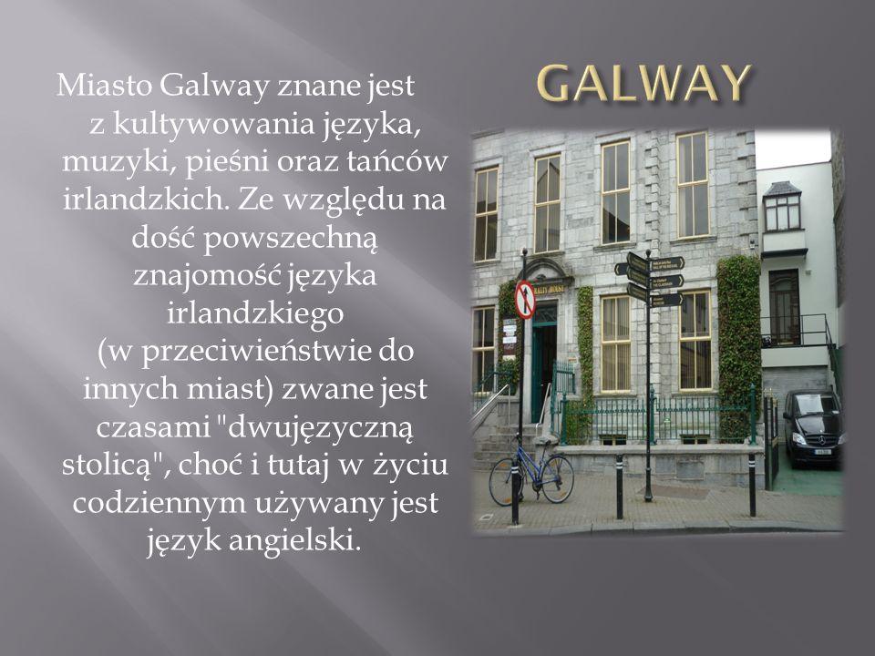 Miasto Galway znane jest z kultywowania języka, muzyki, pieśni oraz tańców irlandzkich. Ze względu na dość powszechną znajomość języka irlandzkiego (w