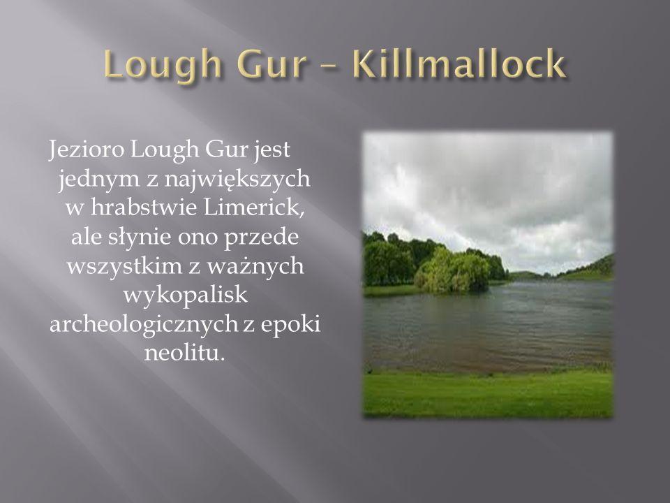 Jezioro Lough Gur jest jednym z największych w hrabstwie Limerick, ale słynie ono przede wszystkim z ważnych wykopalisk archeologicznych z epoki neoli