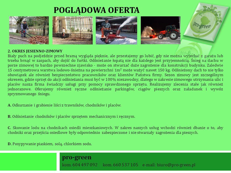 POGLĄDOWA OFERTA 2.