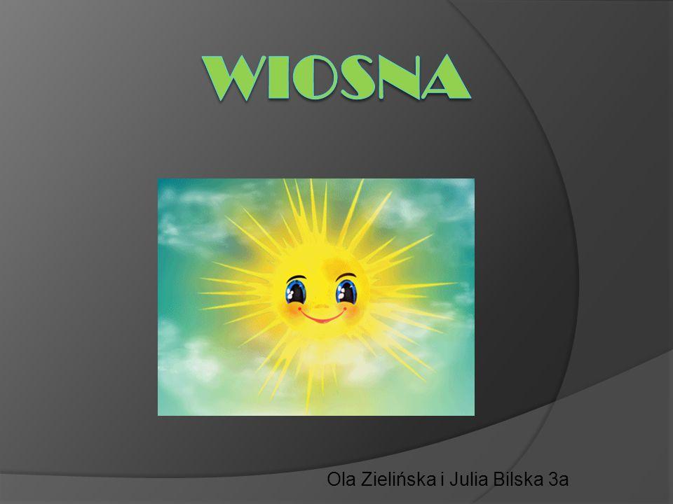 Ola Zielińska i Julia Bilska 3a