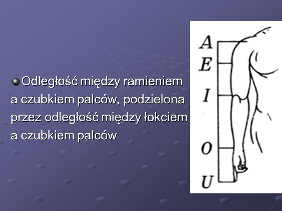 Odległość między ramieniem a czubkiem palców, podzielona przez odległość między łokciem a czubkiem palców