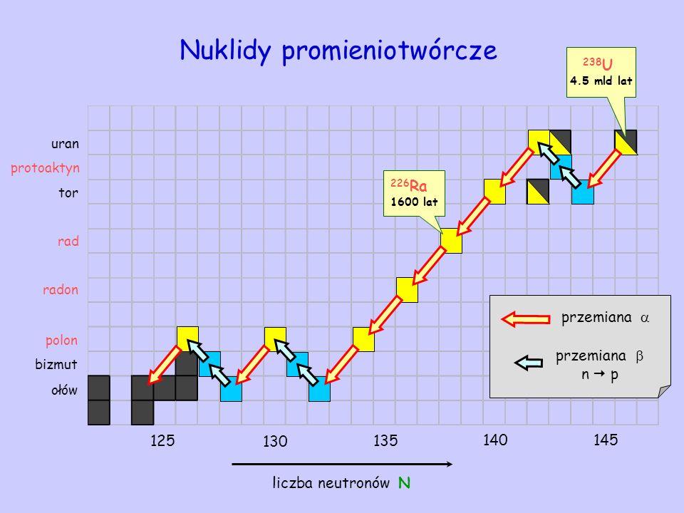 przemiana 238 U 4.5 mld lat ołów bizmut uran tor Nuklidy promieniotwórcze liczba neutronów N przemiana n p protoaktyn 125 130 135 140145 rad 226 Ra 16