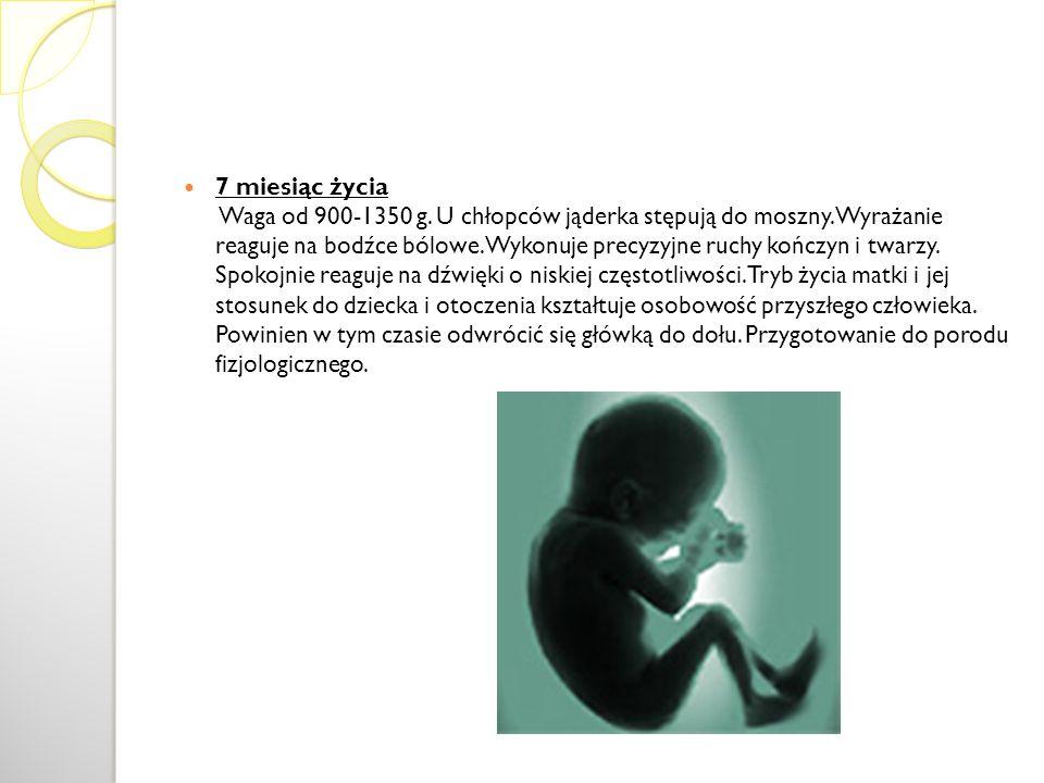 7 miesiąc życia Waga od 900-1350 g. U chłopców jąderka stępują do moszny. Wyrażanie reaguje na bodźce bólowe. Wykonuje precyzyjne ruchy kończyn i twar