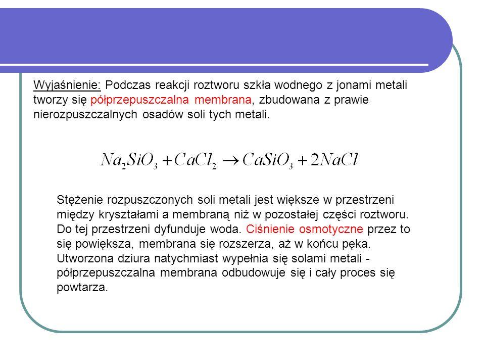 Wyjaśnienie: Podczas reakcji roztworu szkła wodnego z jonami metali tworzy się półprzepuszczalna membrana, zbudowana z prawie nierozpuszczalnych osadó