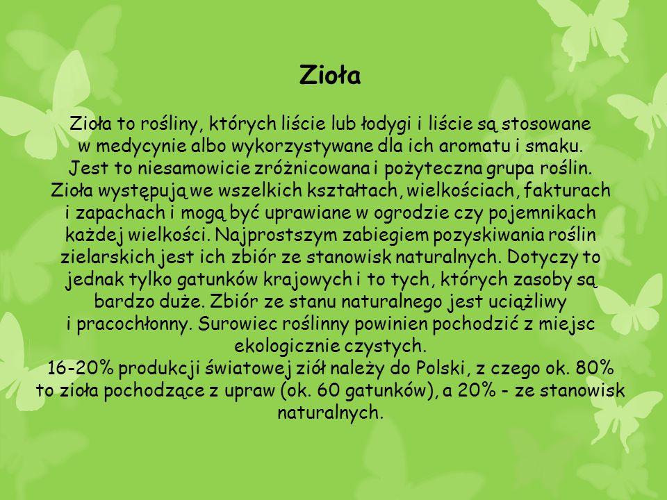 Zioła Zioła to rośliny, których liście lub łodygi i liście są stosowane w medycynie albo wykorzystywane dla ich aromatu i smaku. Jest to niesamowicie