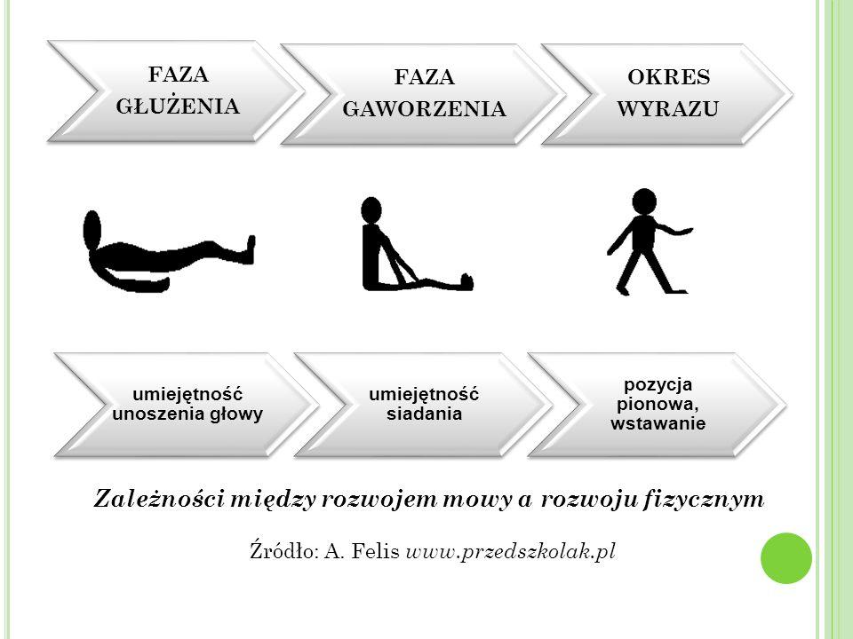 FAZA GŁUŻENIA FAZA GAWORZENIA OKRES WYRAZU umiejętność unoszenia głowy umiejętność siadania pozycja pionowa, wstawanie Zależności między rozwojem mowy a rozwoju fizycznym Źródło: A.