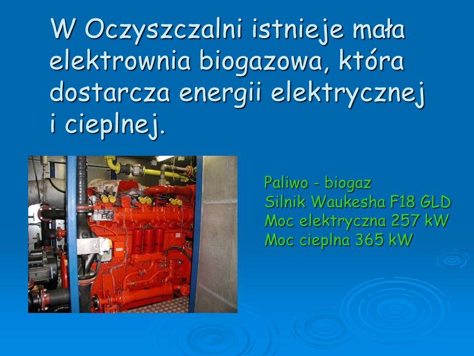 W Oczyszczalni istnieje mała elektrownia biogazowa, która dostarcza energii elektrycznej i cieplnej. Paliwo - biogaz Silnik Waukesha F18 GLD Moc elekt