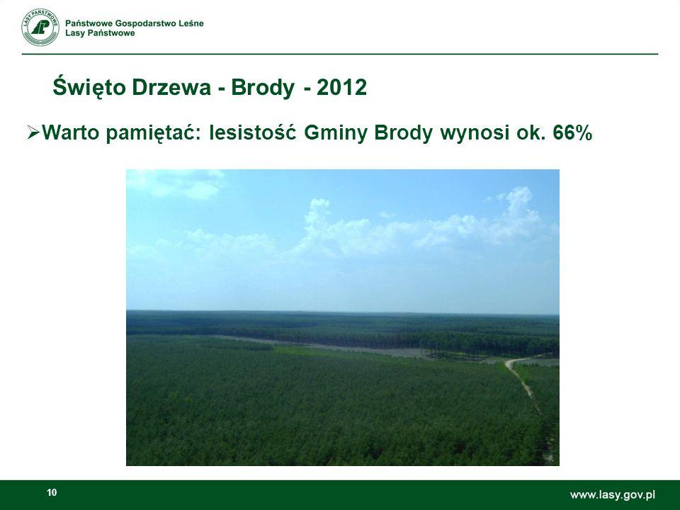 10 Święto Drzewa - Brody - 2012 Warto pamiętać: lesistość Gminy Brody wynosi ok. 66%