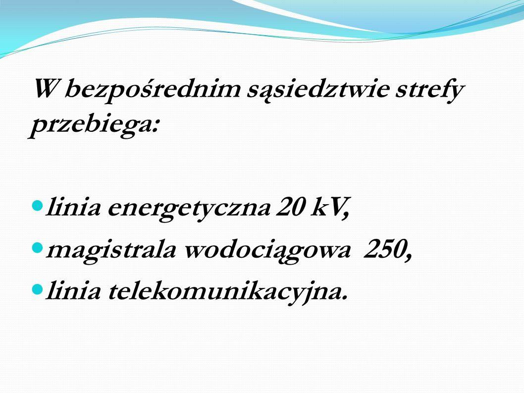 W bezpośrednim sąsiedztwie strefy przebiega: linia energetyczna 20 kV, magistrala wodociągowa 250, linia telekomunikacyjna.