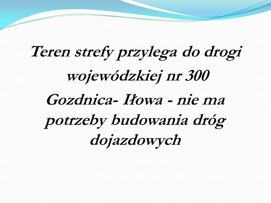Teren strefy przylega do drogi wojewódzkiej nr 300 Gozdnica- Iłowa - nie ma potrzeby budowania dróg dojazdowych