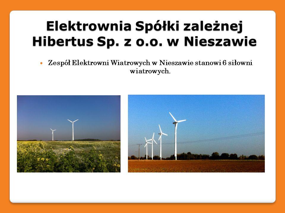 Elektrownia Spółki zależnej Hibertus Sp. z o.o. w Nieszawie Zespół Elektrowni Wiatrowych w Nieszawie stanowi 6 siłowni wiatrowych.