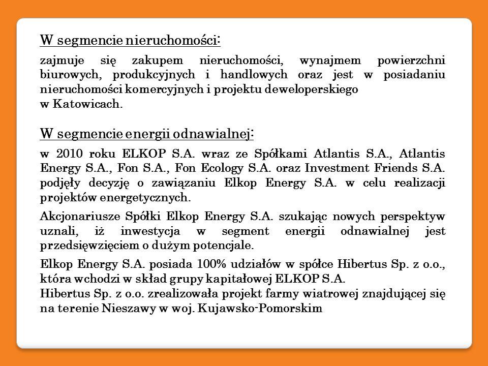 Elektrownia Spółki zależnej Hibertus Sp.z o.o.