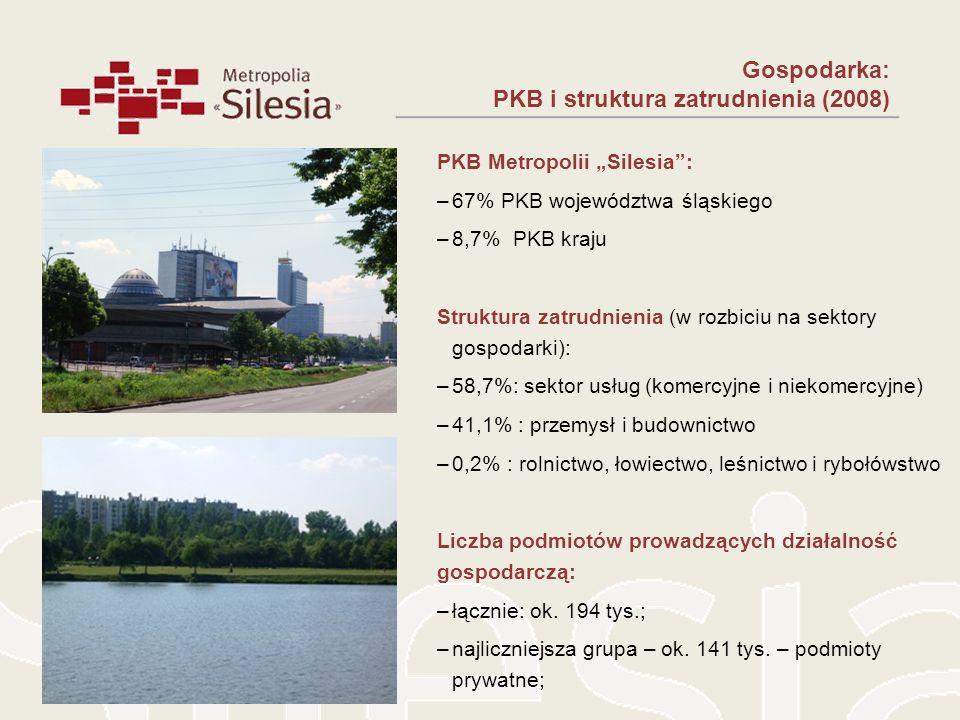 Gospodarka: PKB i struktura zatrudnienia (2008) PKB Metropolii Silesia: –67% PKB województwa śląskiego –8,7% PKB kraju Struktura zatrudnienia (w rozbi