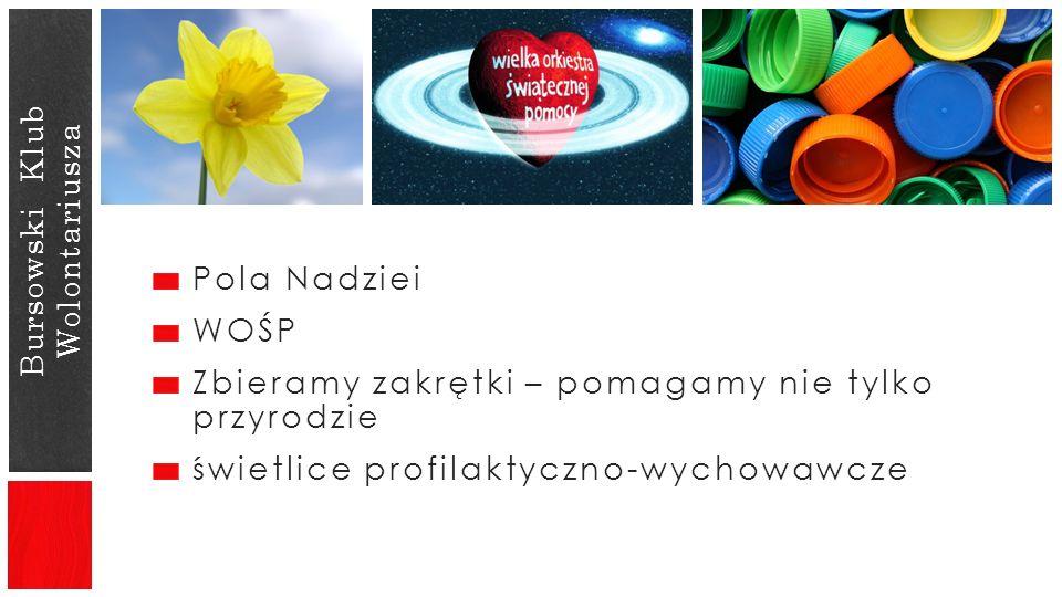 Bursowski Klub Wolontariusza Pola Nadziei WOŚP Zbieramy zakrętki – pomagamy nie tylko przyrodzie świetlice profilaktyczno-wychowawcze