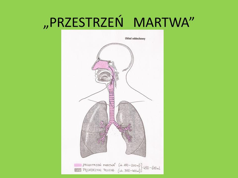 PRZESTRZEŃ MARTWA