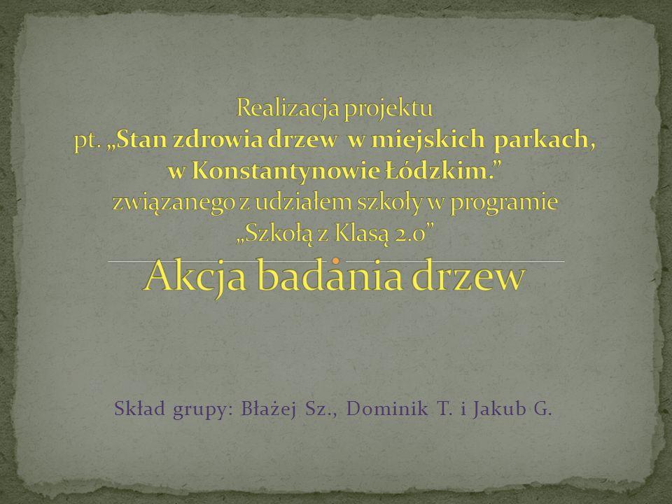 Skład grupy: Błażej Sz., Dominik T. i Jakub G.