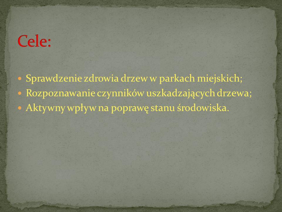 1.Szukanie informacji nt.