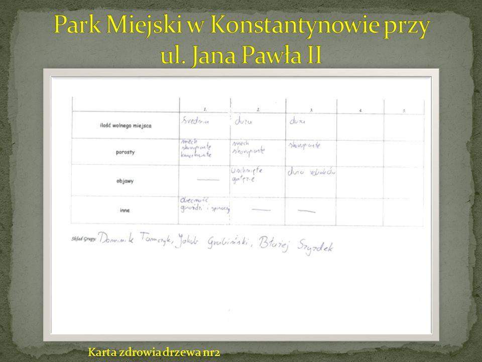 Karta zdrowia drzewa cz.1