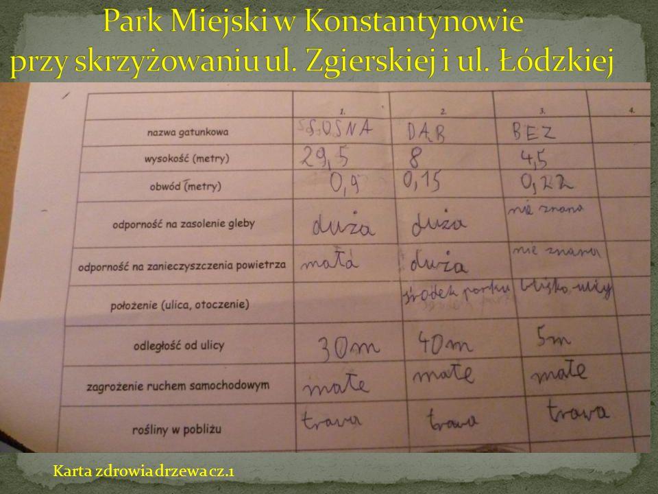 Karta zdrowia drzewa cz.2