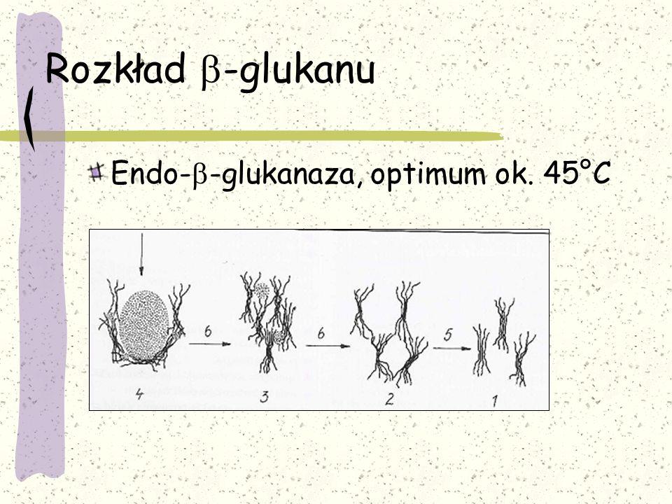 Rozkład -glukanu Endo- -glukanaza, optimum ok. 45°C