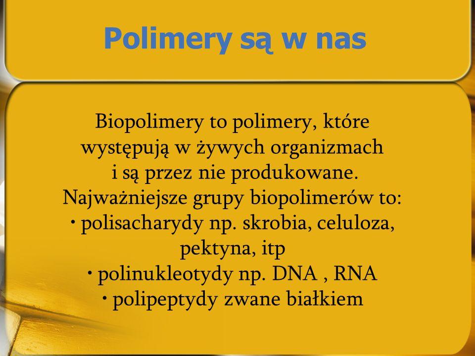Polimery są w nas Biopolimery to polimery, które występują w żywych organizmach i są przez nie produkowane. Najważniejsze grupy biopolimerów to: polis