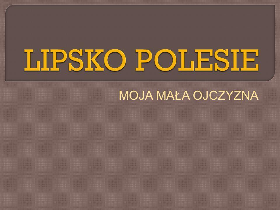 Z Lipska Polesia ulicą Warszawską jedziemy w kierunku południowym.