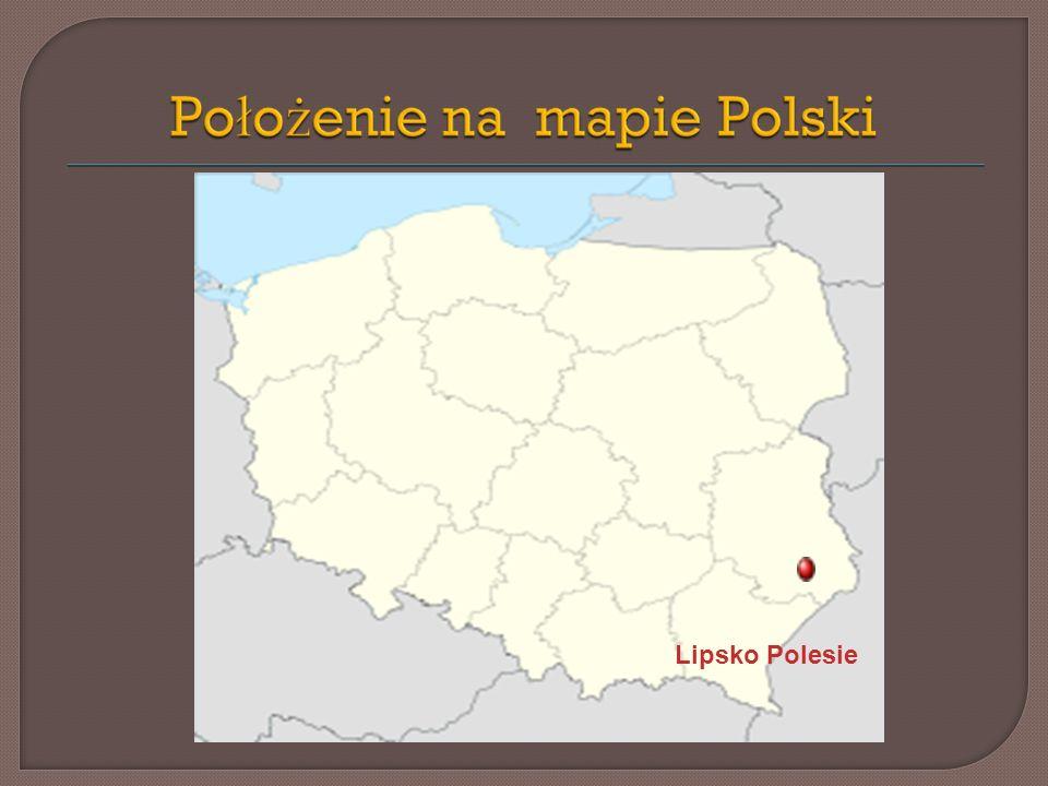 Wieś leży w południowej części obecnej gminy Zamość. Jest jedną z młodszych jej miejscowości.