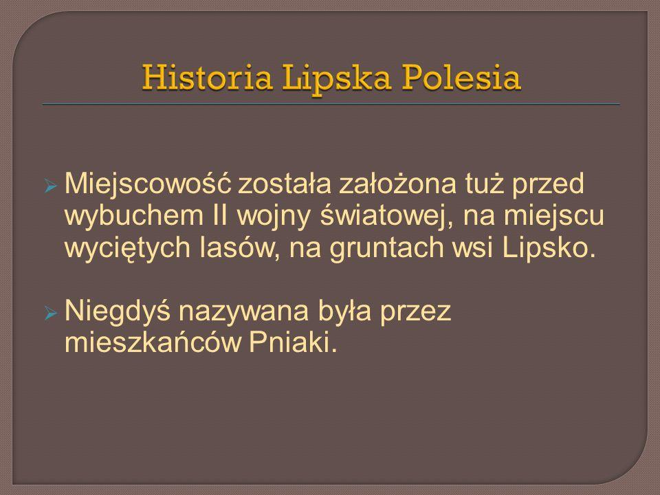 Miejscowość została założona tuż przed wybuchem II wojny światowej, na miejscu wyciętych lasów, na gruntach wsi Lipsko. Niegdyś nazywana była przez mi